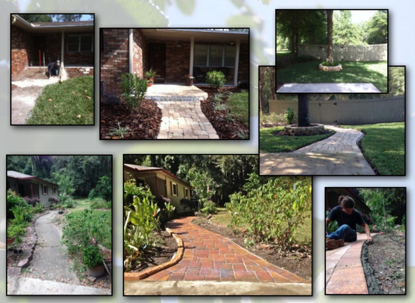 Gainesville Florida Gardening