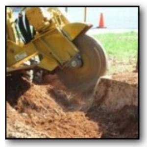 Stump Grinding Gainesville Florida