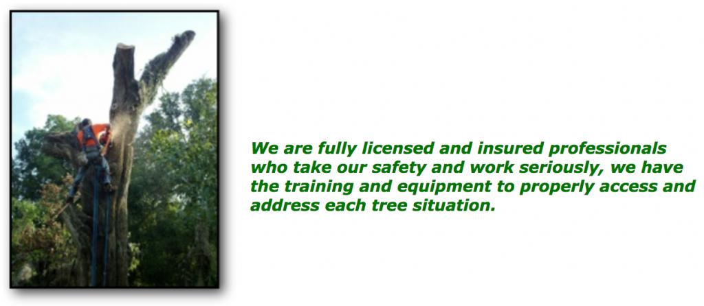arborscape_licensed_insured_professionals